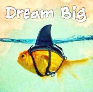 dream_big_fish_shark